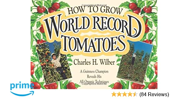 How to Grow World Record Tomatoes: A Guinness Champion