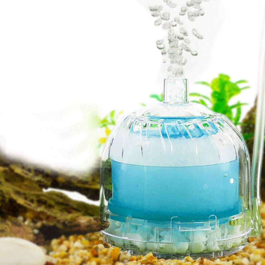 FZZ698 - Filtro para acuario de acuario con bomba de oxígeno para acuario: Amazon.es: Hogar