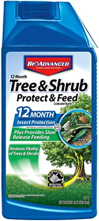 Amazon Com Bioadvanced 701901 12 Month Shrub Protect Feed Insect Killer And Tree Food 32 Ounce Concentrate Bayer Tree And Shrub Insect Control Garden Outdoor
