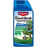 BAYER CROP SCIENCE 701901 12-Month Shrub Protect & Feed Insect Killer and Tree Food, 32-Ounce, Concentrate