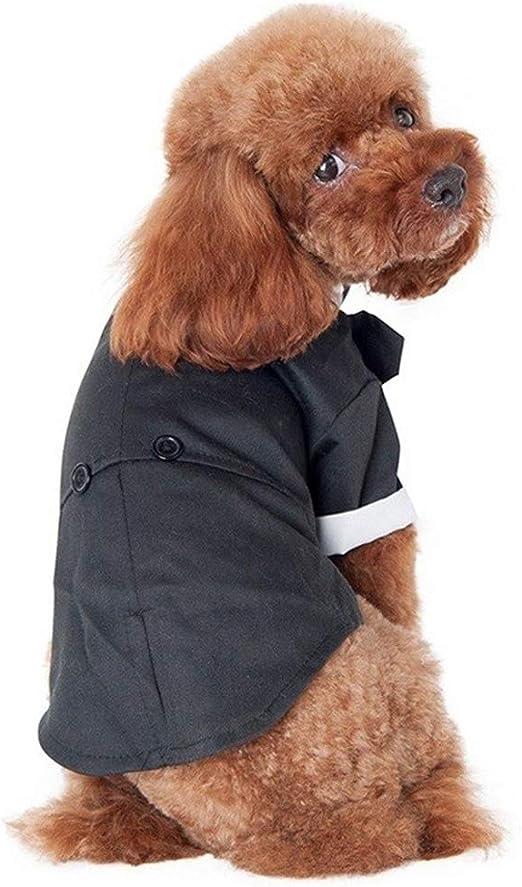 Eyxia- Pet Master Camisa del perro del perrito del animal doméstico ropa de perros pequeños, Traje