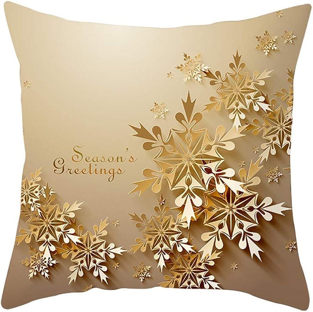 BEERICHH Christmas Cushion...