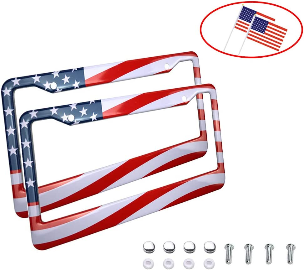 Big Ant License Plate Frame, American Flag Design Frames with Hand Held Small USA Nations Flags - Matte Stainless Steel License Plate Covers with Free Screws Fasteners Caps(2 Pack)