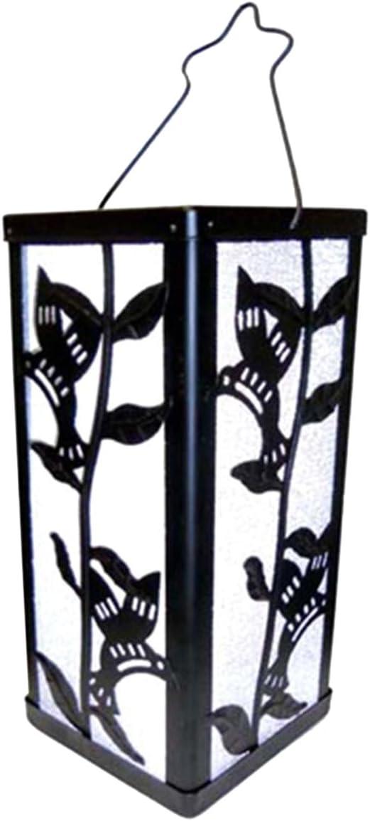 Reflection Hummingbird & Plant - Farol de luz solar: Amazon.es: Jardín