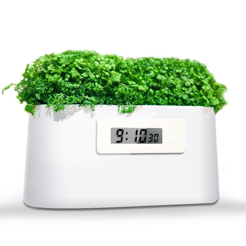 Schlafzimmer B/üro iRuipai Blumentopf Garten Innen Pflanzenbeh/älter T/öpfe Pflanzer//Pflanzenklack//Gr/üne Kraft//Mini-Kraftwerk//DIY kreative Uhr f/ür Wohnzimmer