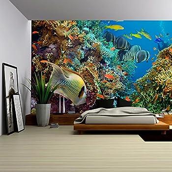 Amazon.com: Wall Mural Aquarium Mural Decoration Colourful ...