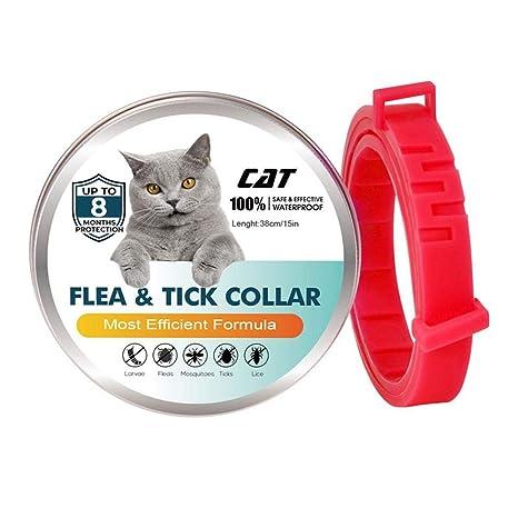 Volwco Collar para pulgas y garrapatas Gatos, 100 ...