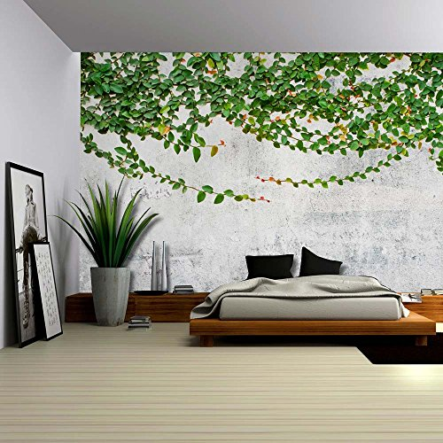 Green Vines Draping from a Grey Pavement Wall Wall Mural Removable Wallpaper