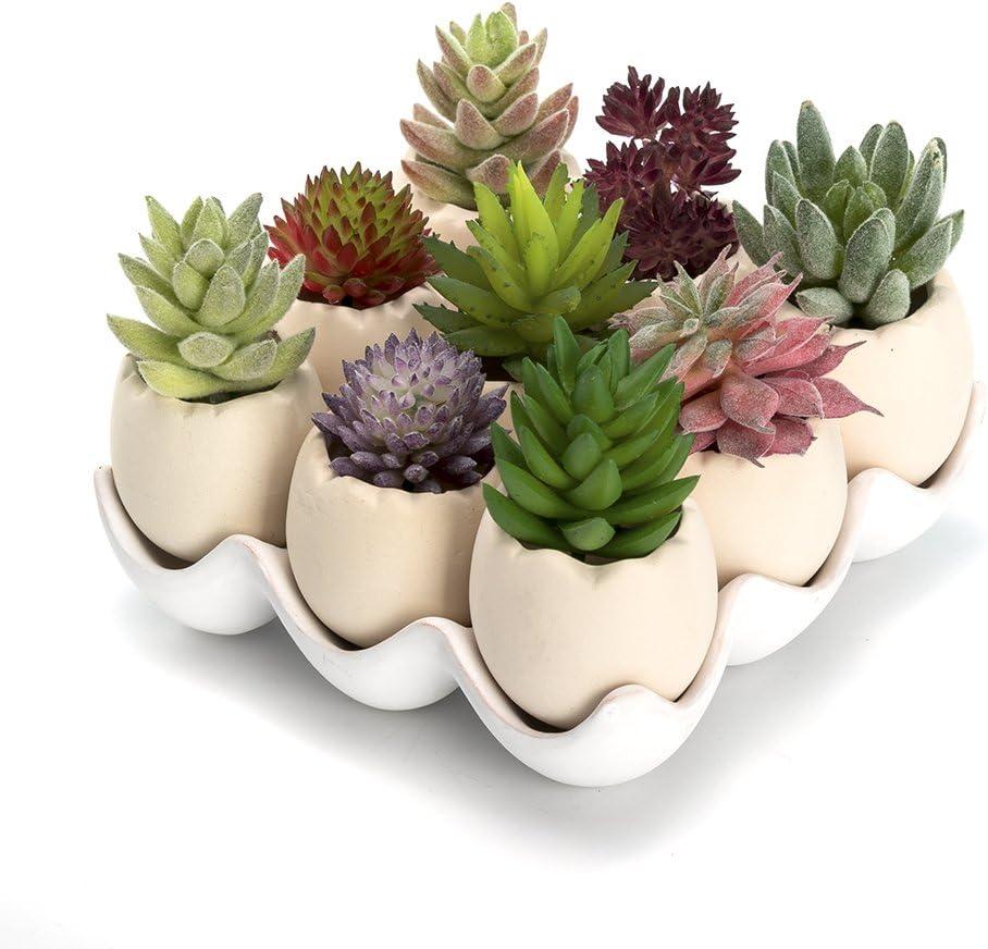Nattol Succulent Pots, Ceramic Eggshell Succulents Planter Pots, Set of 9