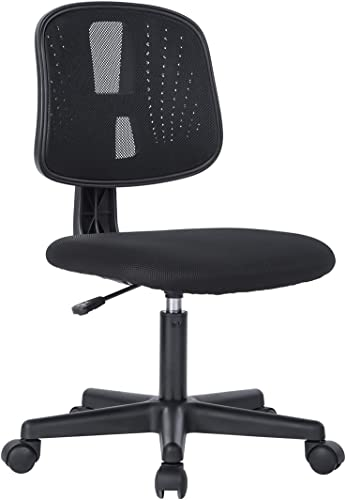 Novelland Ergonomic Adjustable Back Office Swivel Task Chair