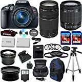 Canon EOS Rebel T5i 18.0 MP CMOS Digital Camera HD Video w/ EF-S 18-55mm f/3.5-5.6 IS STM Zoom Lens +EF 75-300mm f/4-5.6 III Telephoto Zoom Lens + 20pc Accessory Kit - International Version