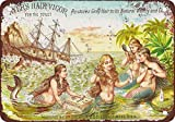 1886 Ayer39;s Hair Vigor Vintage Look Reproduction Metal Tin Sign 12X18 Inches