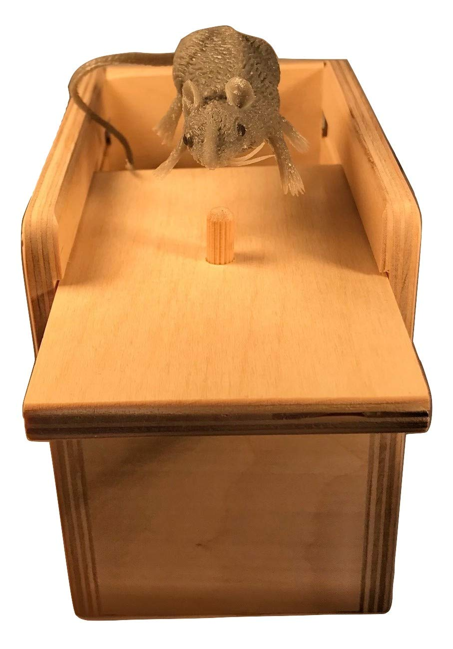 Saving Shepherd Mouse & Spider Surprise Box ~ 2 USA Handmade Fun Prank Gag Gifts by Saving Shepherd (Image #5)