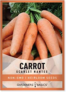 Carrot Seeds for Planting - Scarlet Nantes - Daucus Carota - is A Great Heirloom, Non-GMO Vegetable Variety- 2 Grams Seeds Great for Outdoor Spring, Winter and Fall Gardening by Gardeners Basics