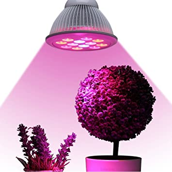 Image result for led grow light