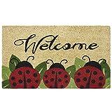 ladybug kitchen - Achim Home Furnishings PCM1830LB6 Ladybug Printed Coir Door Mat, 18