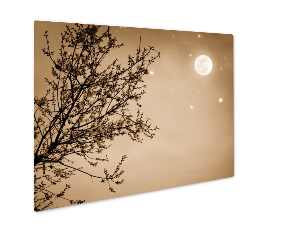 ashley giclee blooming tree night sky 壁アート写真印刷メタルの