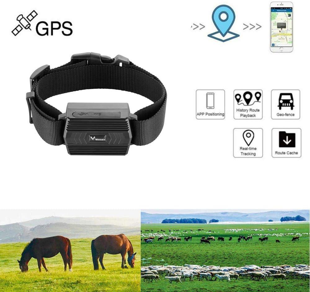 Hangang Localizador de GPS,Tracker GPS,Anti-pérdida de localizador/perseguidor Anti-perdida para Mascotas,Adecuado para Animales Grandes como Ganado, Caballos, Camellos, etc.
