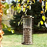 Perky Pet Squirrel Stumper Bird Feeder
