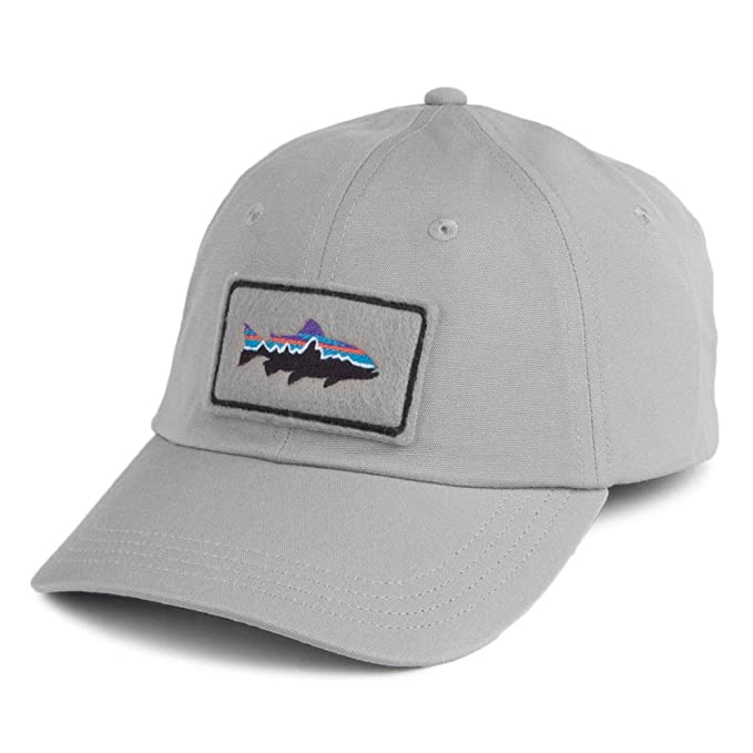 Patagonia Gorra de béisbol Fitz Roy Trout Patch Trade Gris - Ajustable: Amazon.es: Ropa y accesorios