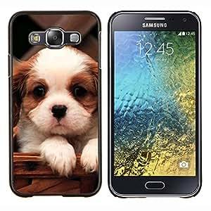 LECELL--Funda protectora / Cubierta / Piel For Samsung Galaxy E5 E500 -- Cavalier King Charles Spaniel Cute Puppy --