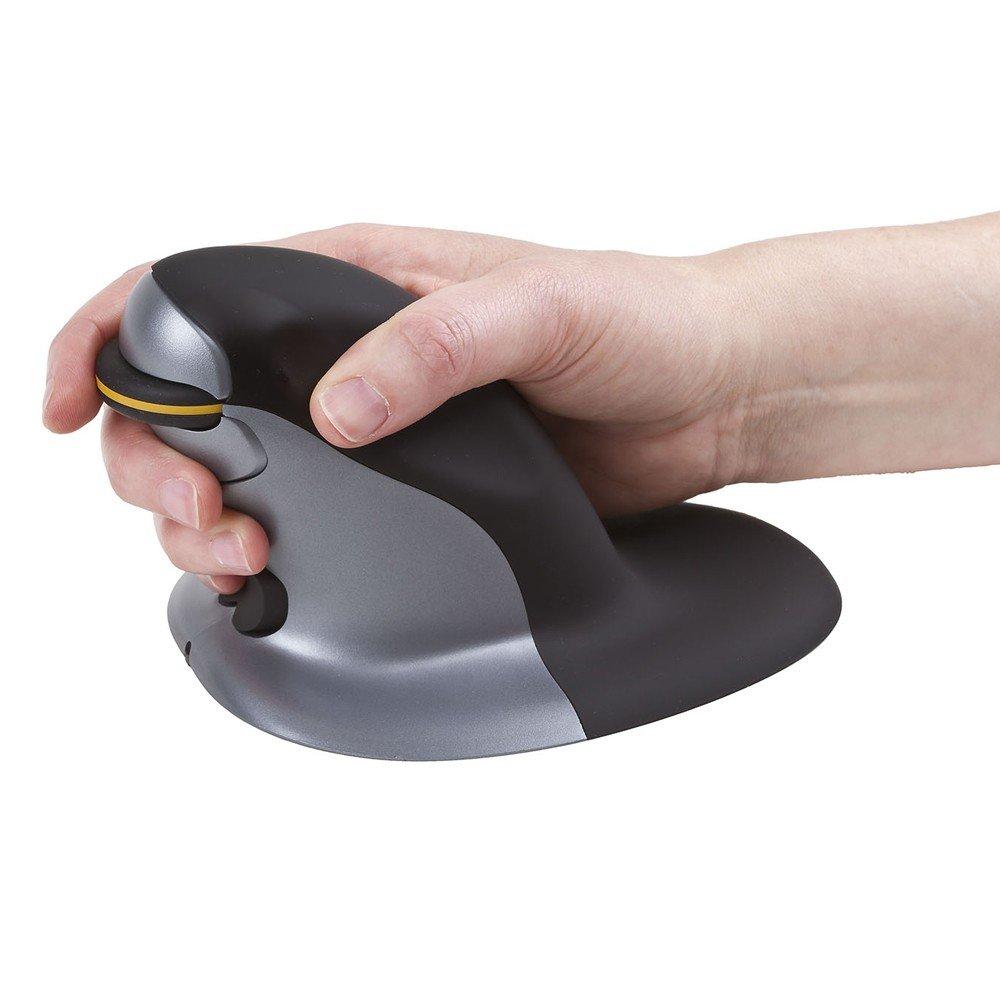 Amazon.com: Posturite Penguin Mouse 9820099 - Small Wireless: Computers & Accessories