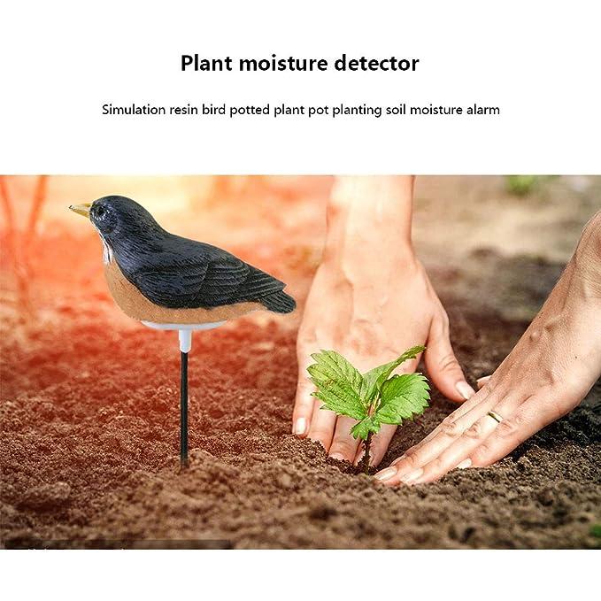 Amazon.com: BSTORE Medidor de humedad para el suelo interior ...