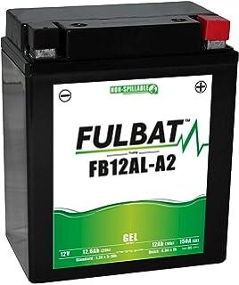 Yuasa YTX7L-BS, Batería sin Mantenimiento, 12V: Yuasa Batteries ...