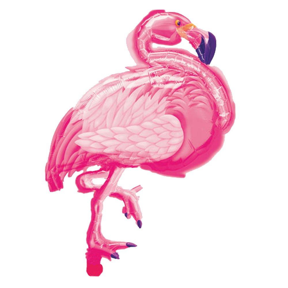 Amazoncom Flamingo Party Like a Pineapple