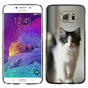 ROKK CASES / Samsung Galaxy S6 SM-G920 / BLACK & GRAY CAT / Delgado Negro Plástico caso cubierta Shell Armor Funda Case Cover