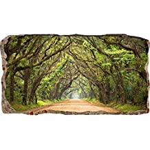 Startonight 3D Mural Wall Art-Photo Decor Window Green Tunnel Tree-Wall Paper That Glows In The Dark- Large 32.28? By 59.06?-Wall Mural Wallpaper for Living Room or Bedroom Nature Collection Wall Art