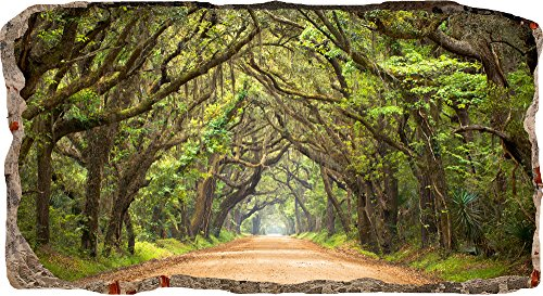 Startonight 3D Mural Wall Art-Photo Decor Window Green Tunnel Tree-Wall Paper That Glows In The Dark- Large 32.28î By 59.06î-Wall Mural Wallpaper for Living Room or Bedroom Nature Collection Wall Art ($100 Bill Wallpaper)