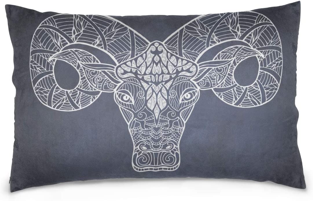 Yagqiny Throw Pillow Cases Decorative Aries Zodiac Sign Symbol 100 Cotton Reversible Zipper Standard Size 20 X 30 Hand Pillow Cover Large Pillowcase Waterproof Pillow Cover Kitchen Dining
