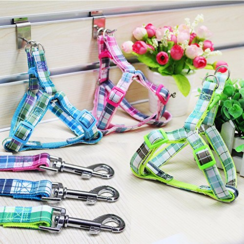 Lushpetz Tartan Plaid Dog Puppy Harness Comes with Matching lead in PInk, Blue or Green (LARGE, BLUE)