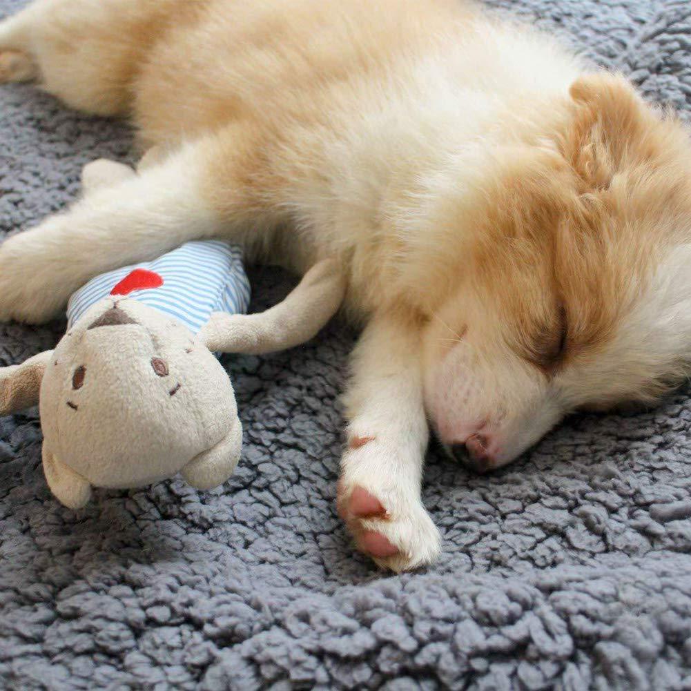 Qiyun Llanta Funda para Asiento Suave Lavable para Gatos/Perros pequeños para Casa 60 * 75 cm (24 * 30pollici)/75 * 100 cm (30 * 40pollici): Amazon.es: ...