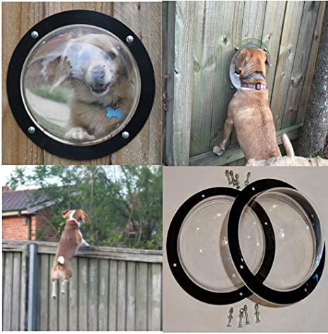 Amazon.com: PEEKABOO Two Dog Vence Windows: Mascotas