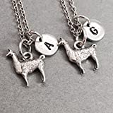 Toodaughters Friend Necklaces Animals