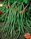 "*Seeds and Things Yard Long Pole Bean 30 Seeds - Garden Fresh Pack! They Are Sometimes Called ""Asparagus Beans"""