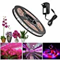 ALight House LED Plant Grow Strip Light,Full Spectrum SMD 5050 Red Blue 4:1 / 5:1 Rope Light with Power Adapter for Greenhouse Hydroponic Pant