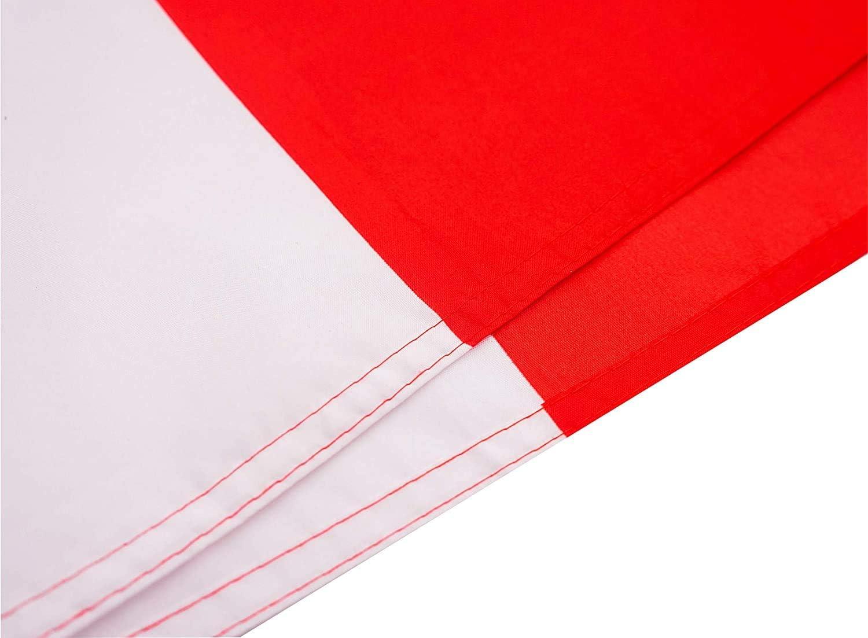 Ericraft Bandera Canadiense Grande 90x150cms Bandera Canada de balcón para Exterior Reforzada y con 2 Ojales metálicos, Bandera Canada Tela, Canada Flag: Amazon.es: Jardín