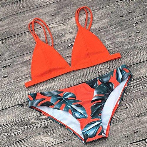 FAMILIZO Mujer Bikinis Push Up Ropa de baño Traje De Baño Bikini Sexy Mujer Push up Bra Bikini Verano Trajes de baño Tops y Braguitas Bikinis Conjuntos ...