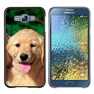 TECHCASE---Cubierta de la caja de protección para la piel dura ** Samsung Galaxy E7 E700 ** --Labrador Retriever Cachorro de perro amarillo Lengua