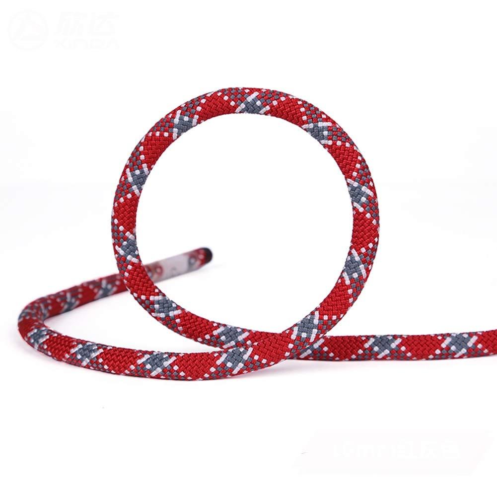 クライミングロープ ザ 屋外の火の脱出救助パラシュートロッククライミングロープ/安全ロープ、直径9 mm / 10 mm耐久性のあるコード (Color : Diameter 10mm, Size : 45m) 45m Diameter 10mm B07SXSDBL8