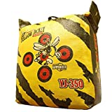 Morrell Yellow Jacket YJ350 Field Point Target