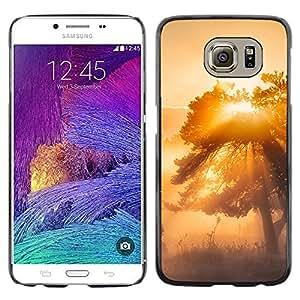 EJOY---Cubierta de la caja de protección la piel dura para el / Samsung Galaxy S6 / --Glow Árbol Misty