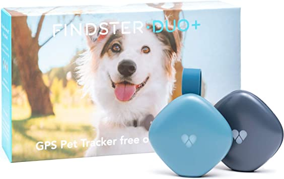 Amazon.com: Findster Duo+ rastreador de mascotas sin cuotas ...