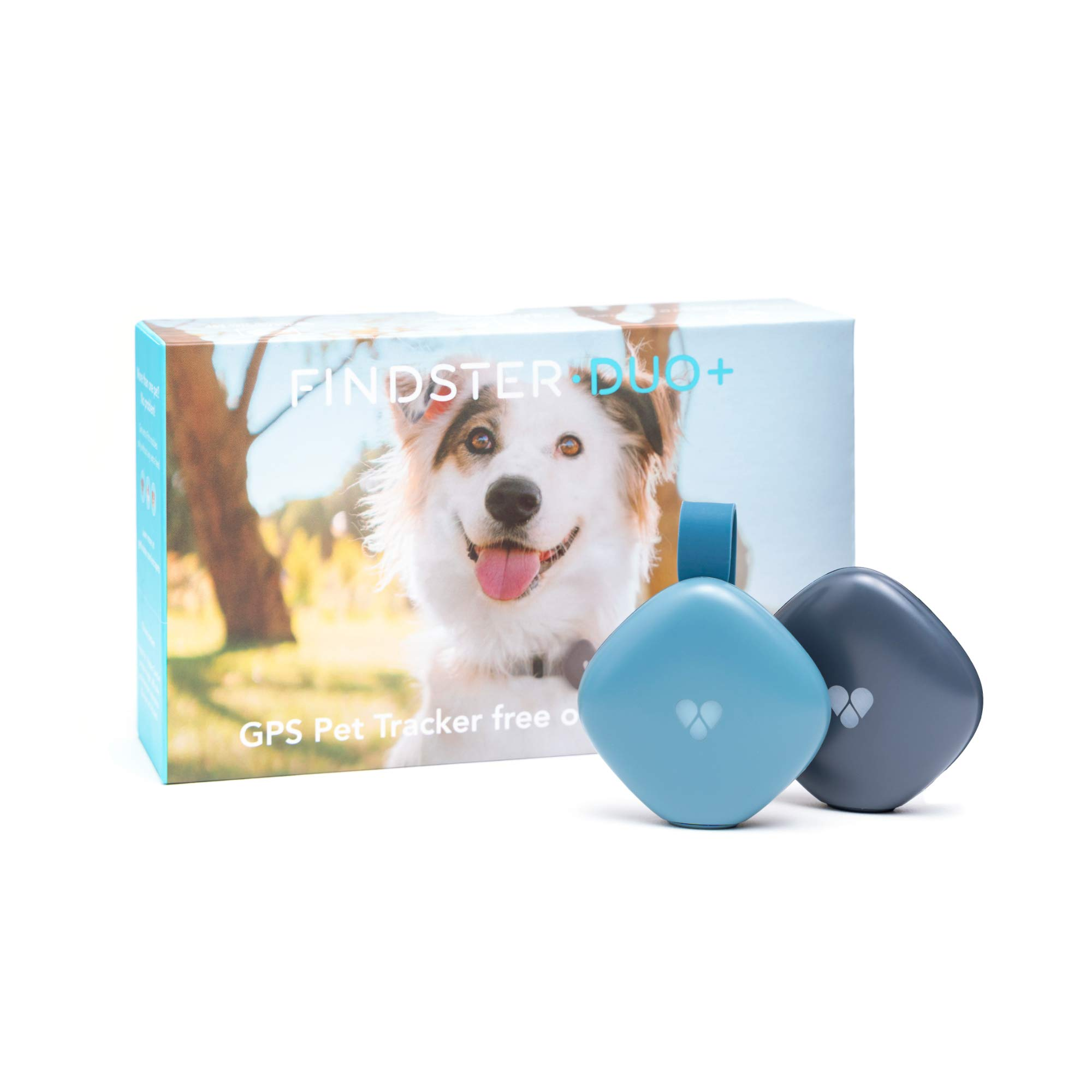 Findster Duo+ Pet Tracker Free of Monthly Fees - GPS Tracking Collar for Dogs and Cats & Pet Activity Monitor by Findster