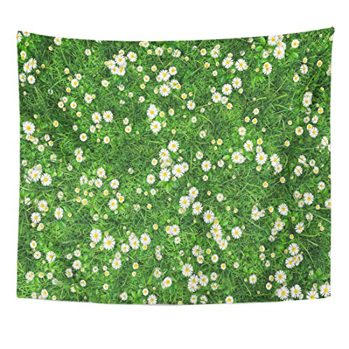 Emvency Tapestry Field of Green Grass Flowers Daisies Chamomile is Surrounded Home Decor Wall Hanging for Living Room Bedroom Dorm 50x60 Inches ()
