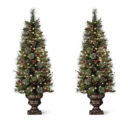 set of 2 pre lit carolina entryway tree christmas decorations 4