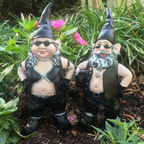 Nowaday Gnomes - Born-to-Ride